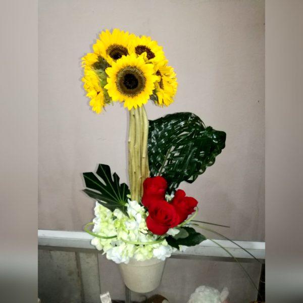 WhatsApp Image 2019-07-18 at 3.33.47 PM